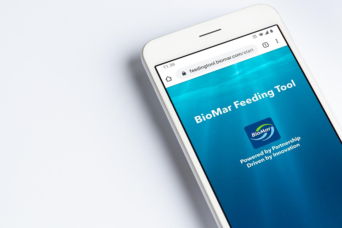 The BioMar Feeding Tool is an online service providing recommendations for the use of BioMar feeds in an efficient and easy-to-follow way.